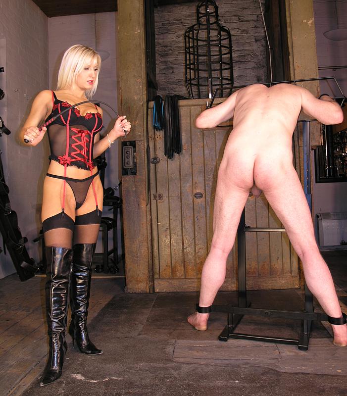 Femdom tied up
